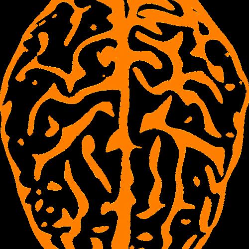 brain-311522_1280