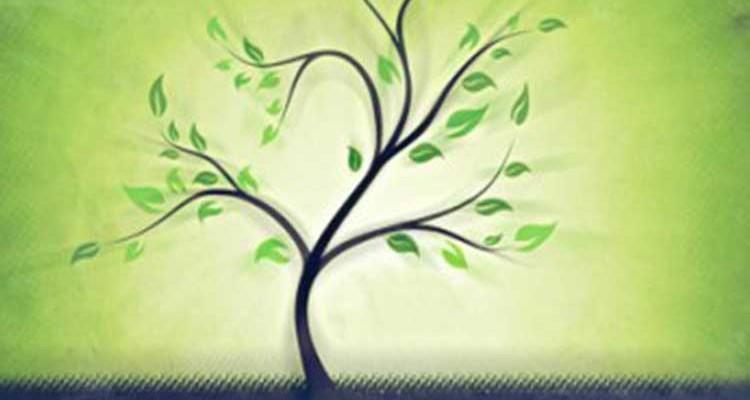 spiritual-growth-e1381103002873