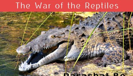 The War of the Reptiles – GalEinai – Revealing the Torah's Inner
